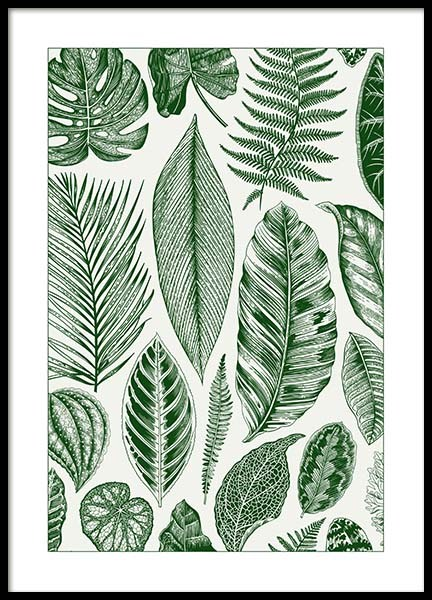 Green Leaves Poster in the group Prints / Sizes / 50x70cm | 20x28 at Desenio AB (8782)
