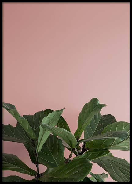 Pink And Green One Poster in the group Prints / Floral at Desenio AB (8839)