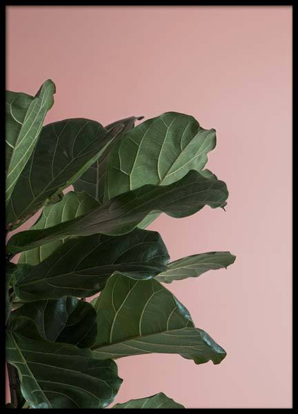 Pink And Green Two Poster in the group Prints / Botanical at Desenio AB (8840)