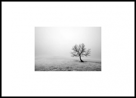 Winter Tree Poster in the group Prints / Photographs at Desenio AB (8894)