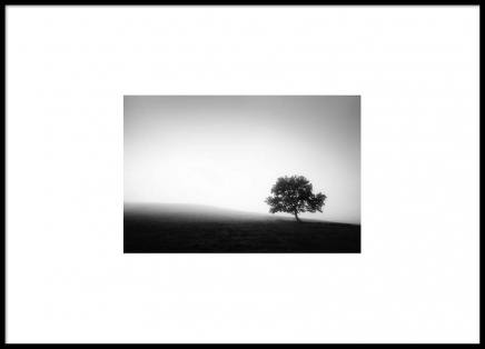 Lonely Tree Poster in the group Prints / Black & white at Desenio AB (8895)