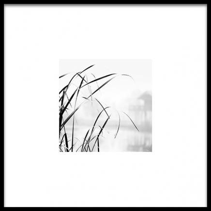 High Grass Poster  in the group Prints / Photographs at Desenio AB (8910)