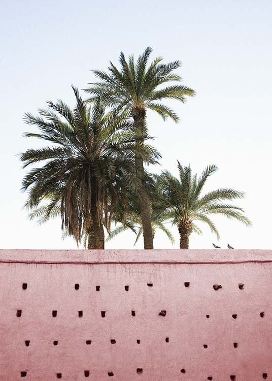 Pink Palms Poster / Photographs at Desenio AB (10270)