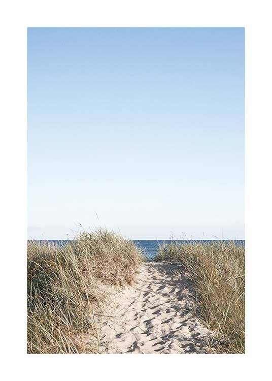 Path on beach Poster / Nature prints at Desenio AB (10477)