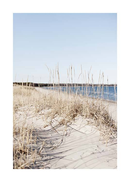 Grass by Sea Poster / Nature prints at Desenio AB (10478)