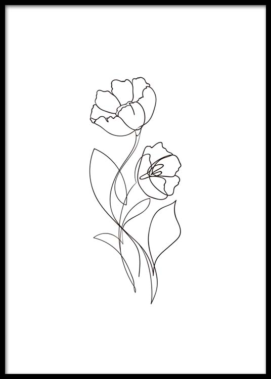 Line Drawing Poster : Flower lines no poster