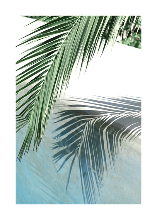 Poolside Palm Reflection Poster / Photographs at Desenio AB (10666)