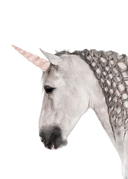 - Animal photo of a magic unicorn with a braided mane.