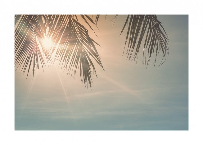 Sunset Palm Leaves Poster / Skies at Desenio AB (10882)