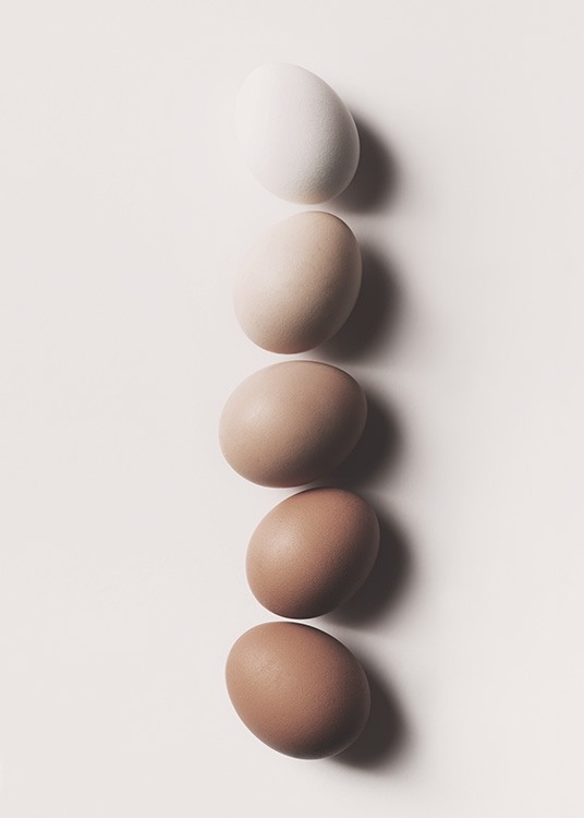 - Stylish kitchen poster with different coloured eggs in a row.