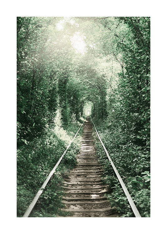 Forest Tunnel Poster / Nature prints at Desenio AB (11265)