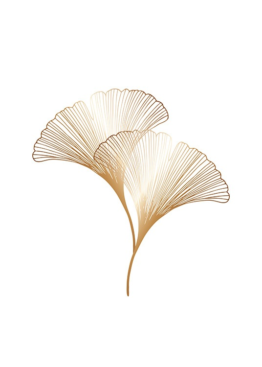 – Graphic illustration with ginkgo leaves in gold on a white background