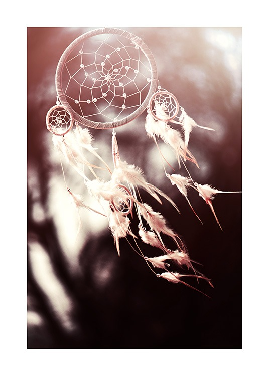 White Dreamcatcher Poster / Photographs at Desenio AB (11887)