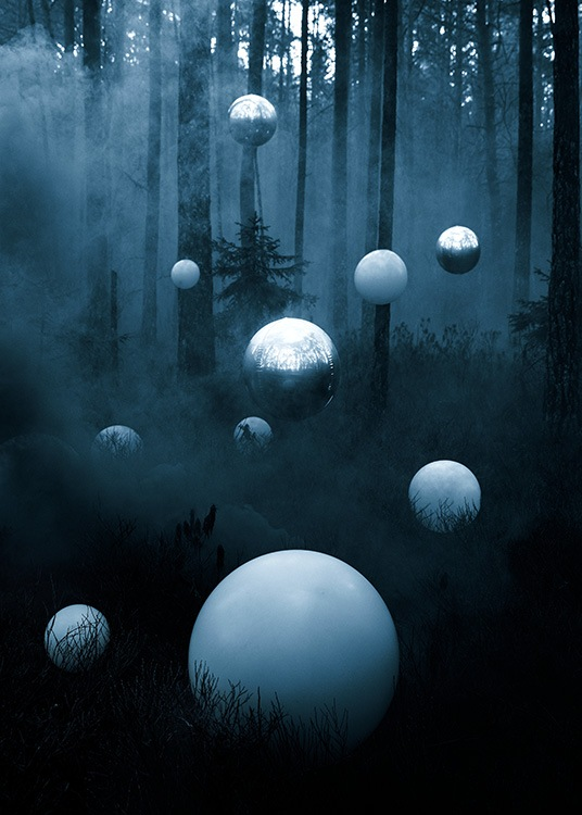 Deep Forest Poster / 50x70 cm | 19 ⅝ x 27 ½ in at Desenio AB (12189)