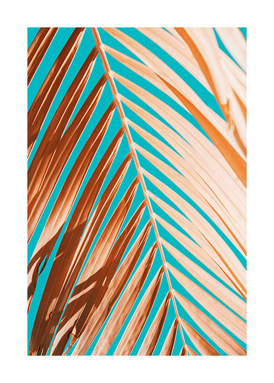 Palm Leaf Against Blue Sky Poster / Photographs at Desenio AB (12414)