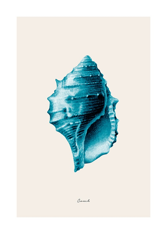 Blue Conch Poster / Illustrations at Desenio AB (12428)