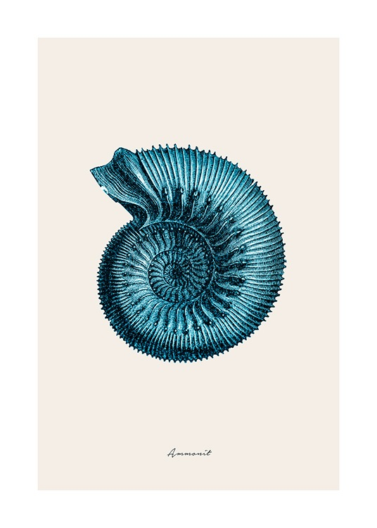 Blue Ammonit Poster / Nature prints at Desenio AB (12429)