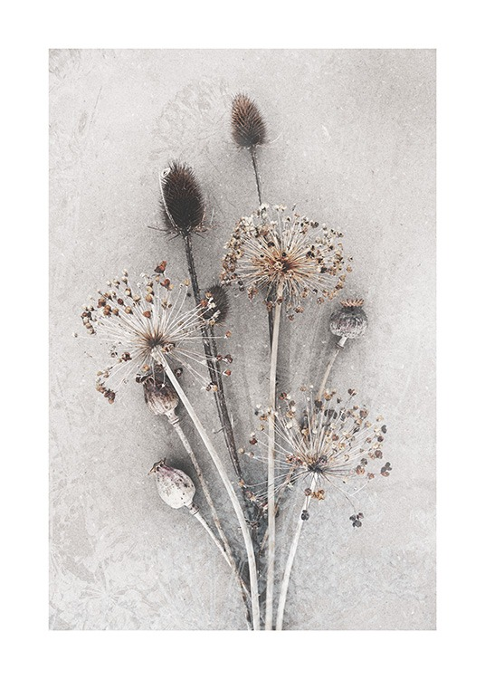 Dried Bunch of Flowers Poster / Photographs at Desenio AB (12666)