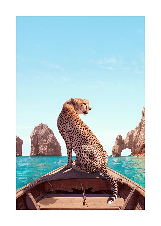 Los Cabos Poster / Nature prints at Desenio AB (12738)