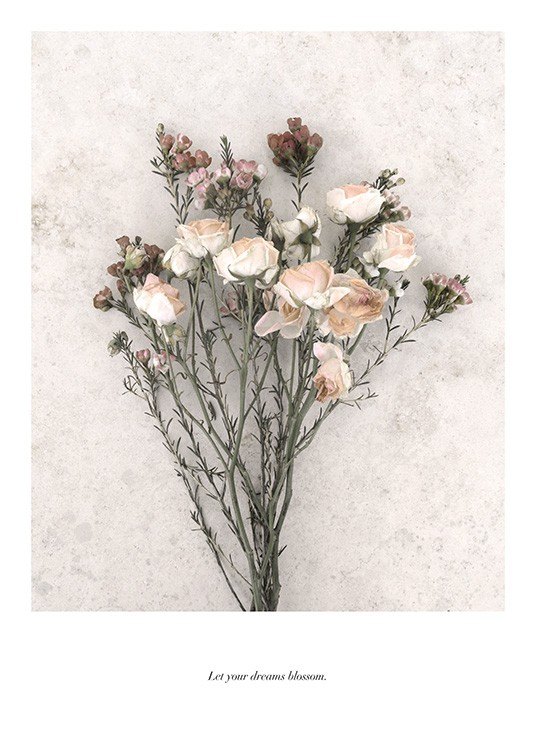 Botanical photograph of dried bouquet of flowers on a grey structured background