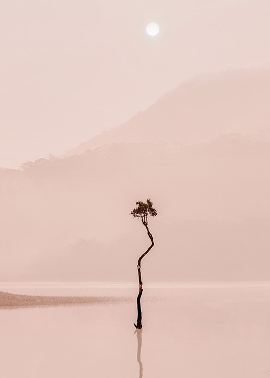 Photograph of tree reflecting in pink foggy lake with mountains and moon in the background