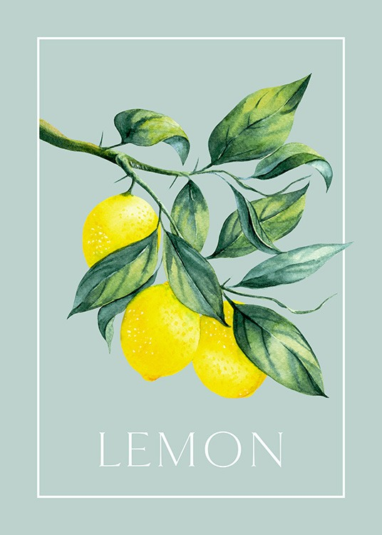 Vintage illustration of two lemons with Lemon written underneath and a rectangle around