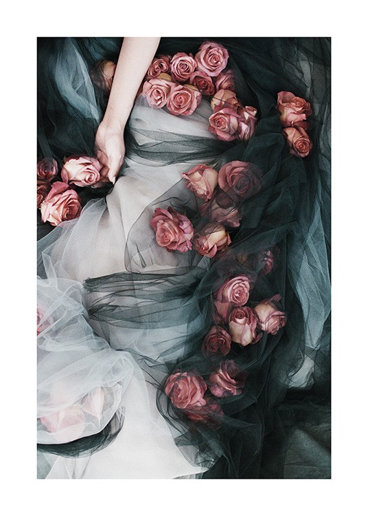 - Photograph of red roses scattered over a black and white tulle skirt