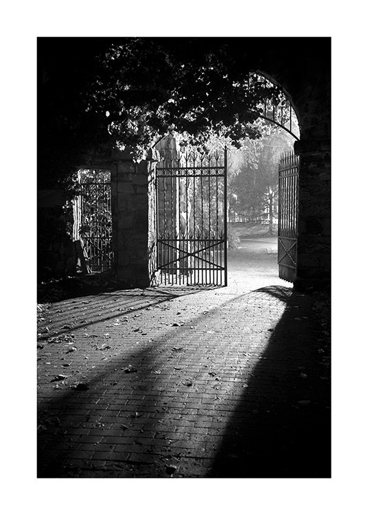 - Black and white photograph of shadows and leaves on the ground with an open gate