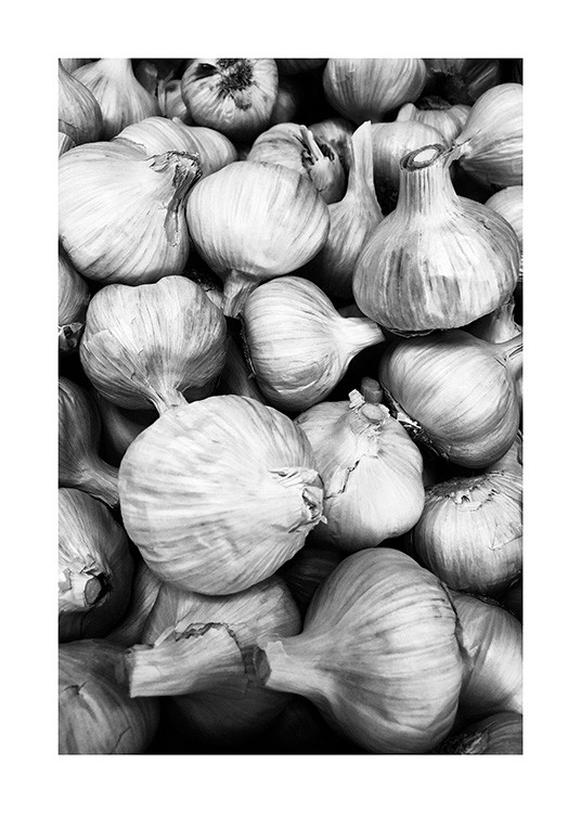 - Black and white photograph of garlics in a bunch