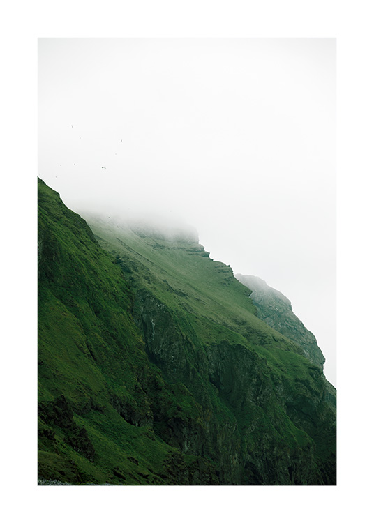 - Photograph of foggy green landscape in Iceland