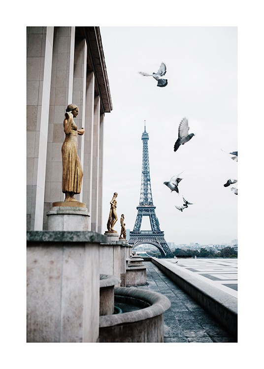 Paris poster pigeons illustration on paper
