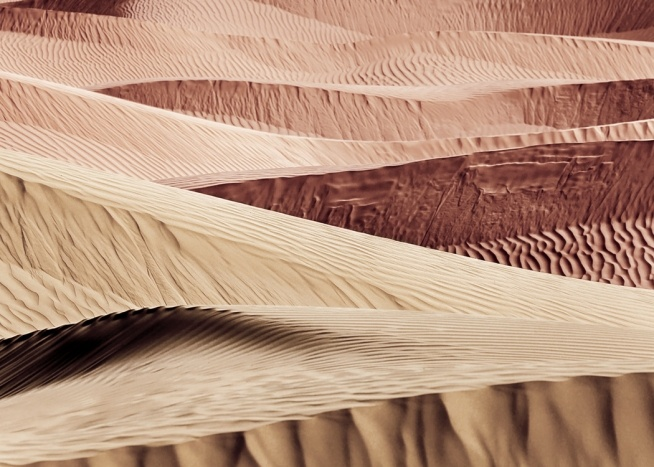 - Photograph of sand dunes in a desert with ridegs in the sand