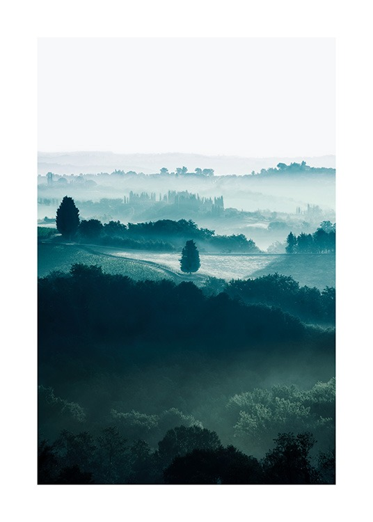 - Nature photograph of trees on fields in Tuscany, covered in fog and mist