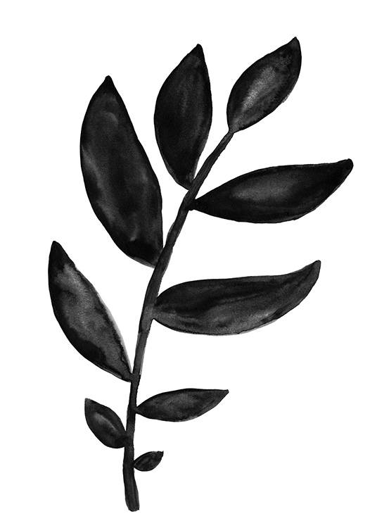 - Black branch with leaves painted as a watercolour painting on a white background