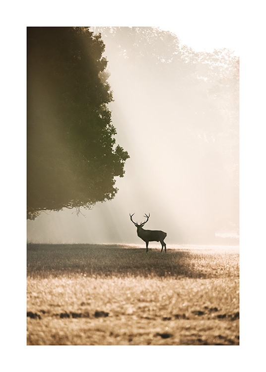 - Nature print with a deer standing underneath a tree in sunlight on a field