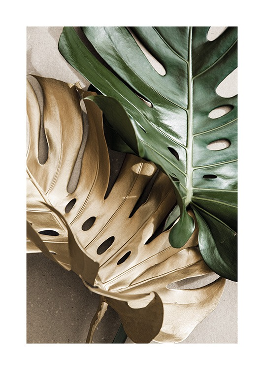 Gold Monstera No2 Poster / Monsteras at Desenio AB (13668)