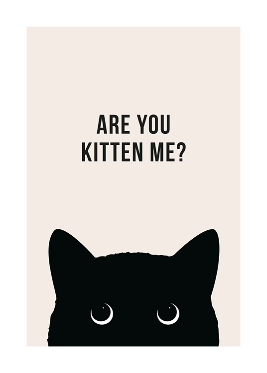 Are You Kitten Me? Poster / Humour at Desenio AB (13790)