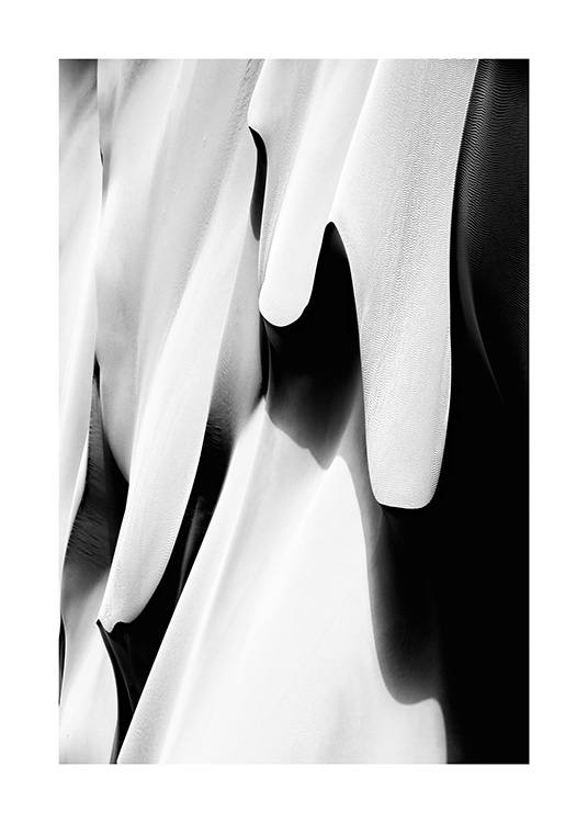 - Black and white photograph of abstract sand dunes in a desert