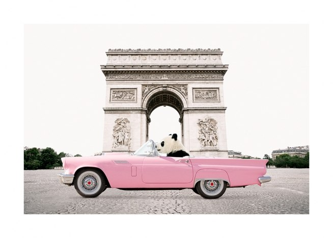 - Photograph of a panda driving a pink card in front of the Triumph Arc in Paris