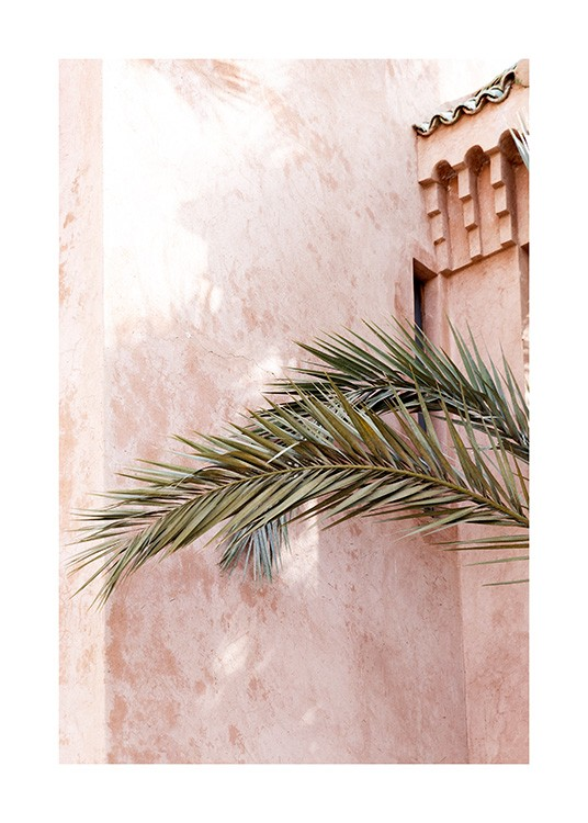 – Photograph of a pink building with a chalk look behind green palm leaves