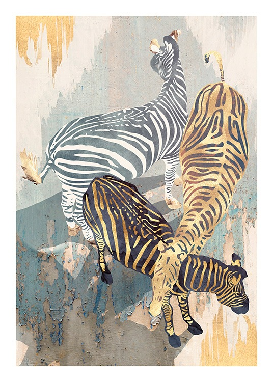 – Graphic illustration with zebras in gold, black and white, on a painted background in beige, blue and gold