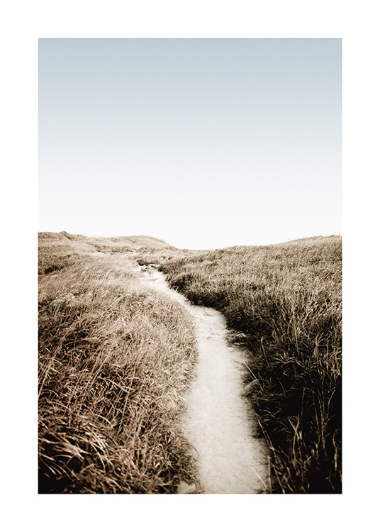 – Photograph of grass surrounding a path made of sand with a blue sky in the background