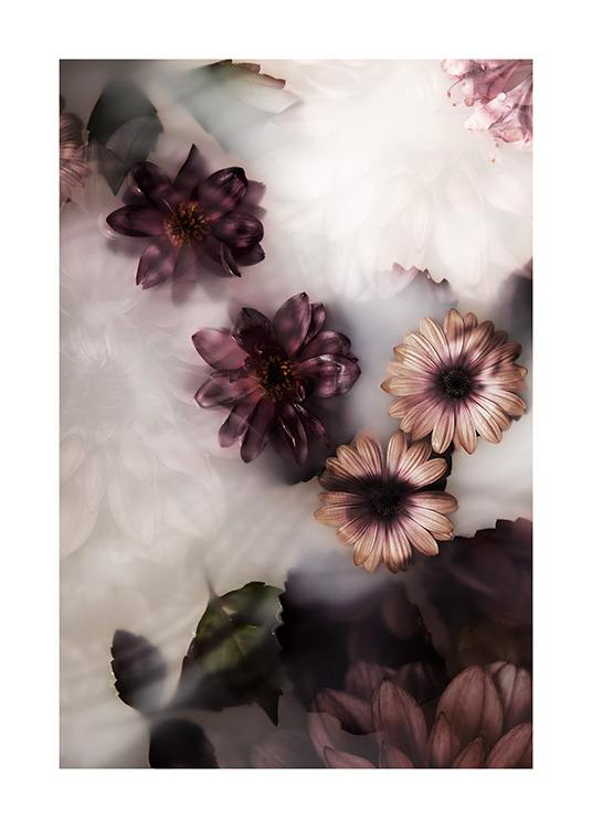 – Photograph of flowers in pink and dark purple floating in a milk bath