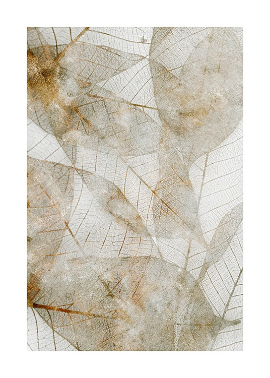 – Photograph of beige and gold abstract leaves
