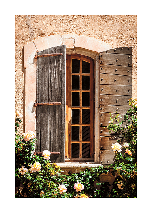 – Photograph of rose bushes in front of a house with a wooden window