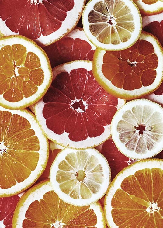 - Beautiful colourful kitchen poster with all types of citrus fruits cut into slices.