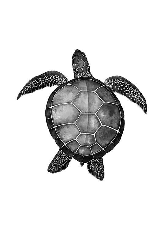 - Black and white animal poster with a turtle motif on a white background.