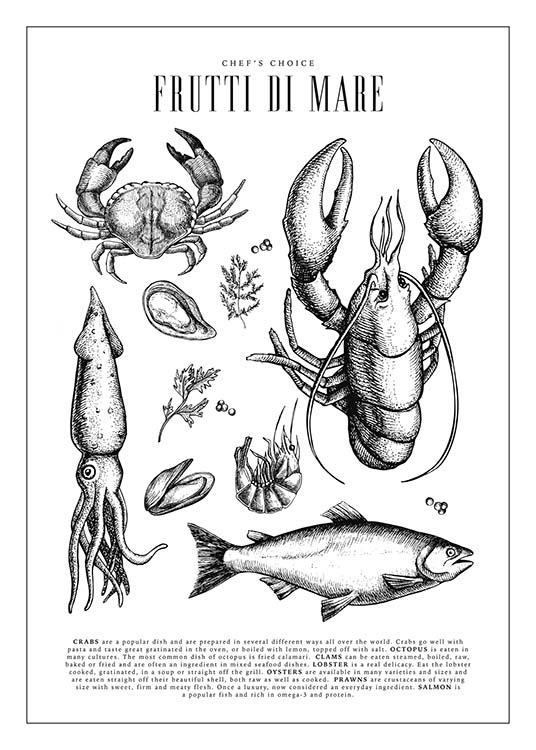 - Kitchen poster with drawings of various sea creatures such as crabs, mussels and squids.