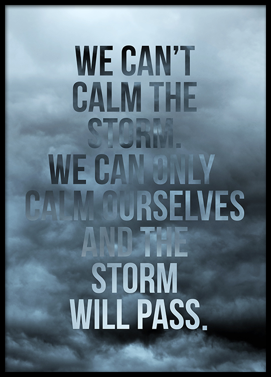 The Storm Will Pass Poster