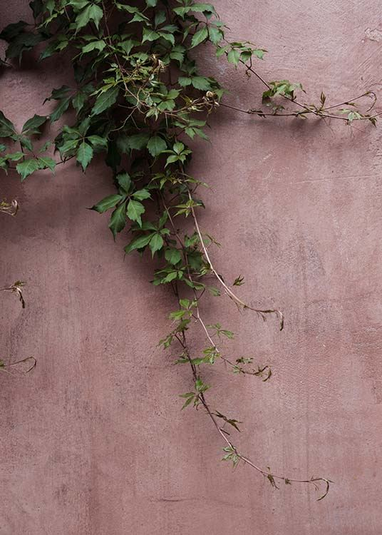 Stockholm Pink Wall Poster / Green plants at Desenio AB (2882)